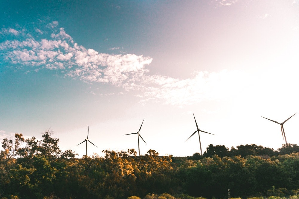 What sustainability means to us and why we hate greenwashing